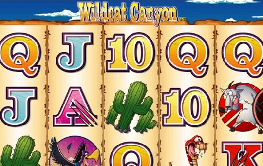 Wildcat Canyon Slot in Detail Online